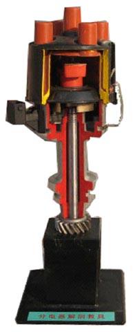 分电器解剖模型
