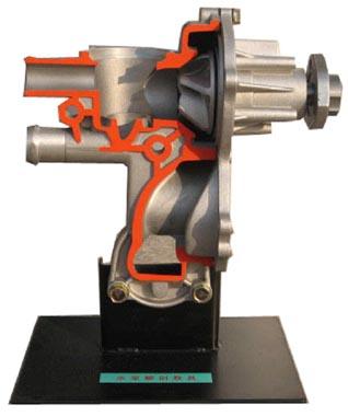 水泵解剖模型