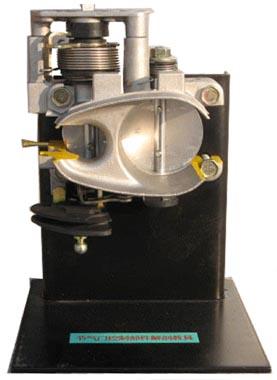 节气门控制元件解剖模型